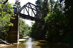 1909 Railroad Bridge (1) (Ian E. Abbott) Tags: railroad bridge americanbridgecompany oldbridge sanlorenzoriver henrycowellredwoodsstatepark cowellredwoods california felton stateparks redwoodtrees redwoods forest