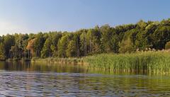 White lake / Белое озеро (Boris Kukushkin) Tags: water white lake belarusian nature green trees forest reflection even evening вода белое озеро белорусская природа деревья лес отражение arsat f14 50mm арсат