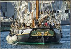 La Recouvrance - Concarneau (Nadine.Dvx) Tags: concarneauleport bateaux bretagne finistère france larecouvrance concarneau goéletteàhunier navires