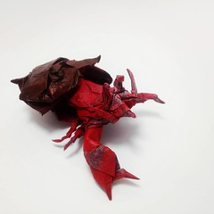 Hermit Crab (GGIamBatman) Tags: origami papiroflexia hermit crab satoshi kamiya cangrejo hermitaño