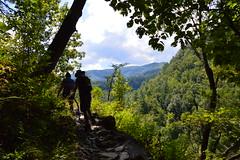 Great Smoky Mountains NP | 2019.09.01 | DSC_0635 (Kaemattson) Tags: greatsmokymountainsnationalpark greatsmokymountains smokymountains blueridgemountains mountains appalachianmountains appalachiantrail tremontinstitute cadescove