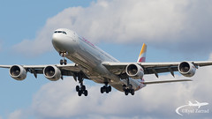 LHR - Iberia Airbus A340-600 EC-IOB (Eyal Zarrad) Tags: a346 eciob egll iberia londonheathrow aircraft airport aviation airline airlines aeroplane avion eyal zarrad airplane spotting avgeek spotter airliner airliners dslr flughafen planespotting plane transportation transport photography aeropuerto 2019 canon 7d mk2 jet jetliner lhr uk england london heathrow bedfont myrtle avenue eastchurch 27r 27l landing