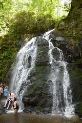 Smoky Mountains NP | 2019.09.01 | DSC_0755 (Kaemattson) Tags: greatsmokymountainsnationalpark greatsmokymountains smokymountains blueridgemountains mountains appalachianmountains appalachiantrail tremontinstitute cadescove