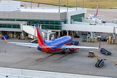 N7724A Boeing 737-7BD Southwest (SamCom) Tags: kdal lovefield dallaslovefield swa southwest southwestairlines n7724a boeing 7377bd b737