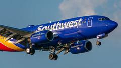 N743SW Boeing 737-7H4 Southwest (SamCom) Tags: kdal lovefield dallaslovefield swa southwest southwestairlines n743sw boeing 7377h4 b737