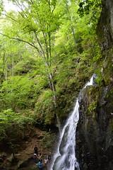 Smoky Mountains NP | 2019.09.01 | DSC_0766 (Kaemattson) Tags: greatsmokymountainsnationalpark greatsmokymountains smokymountains blueridgemountains mountains appalachianmountains appalachiantrail tremontinstitute cadescove