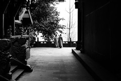 Spiritual soul (Go-tea 郭天) Tags: chongqing républiquepopulairedechine spiritual soul monks alone lonely 2 back backside sun sunny shadow temple ancient old traditional tradition history historical historic religion religious buddha buddhism buddhist trees desert silence silent quiet mood men together street urban city outside outdoor people candid bw bnw black white blackwhite blackandwhite monochrome naturallight natural light asia asian china chinese canon eos 100d 24mm prime nature