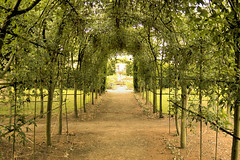 Ashridge - 81 (Aozma Qureshi) Tags: ashridge castle uk england trees travel garden landscape green pathway archway