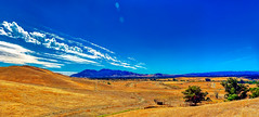 Mt. Diablo Panorama from North Concord (greensteves) Tags: concordca omd 1240mmf28 mtdiablo concordnavalweaponsstation hills clouds landscape trees