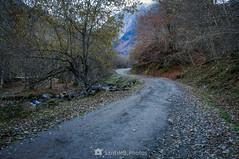 Siente el frío (SantiMB.Photos) Tags: 2blog 2tumblr 2ig valdetoran valldaran valdaran pirineos pyrenees lleida otoño autumn río river toran camino way path sendero frío cold geo:lat=4281911891 geo:lon=080387000 geotagged santjoandetoran cataluna españa