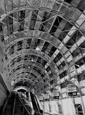 Toronto Skywalk (scilit) Tags: skywalk toronto underground walkway party downtown unionstation architecture dome glass beams steel skylight stairs escalator people windows monochrome blackandwhite bw urban design lines curves shadows