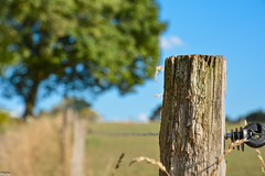 ... Happy Fence Friday to all flickr friends, HFF ... (wolli s) Tags: hff happyfencefriday nikon d7100 1680