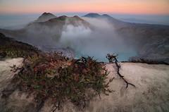 Riding the Dragon (Zur@imiAbro@d) Tags: ijen mountijen eastjava java indonesia surabaya volcano bluefire crater sulphur smoke acidiclake gas poisonous sunrise mountraung edelweiss colors zuriiabrod turqoise