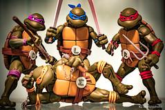 TMNT (kenloh) Tags: tmnt ninjaturtles teenagemutantninjaturtles neca 6inchfigurine figurines turtle ninja retro 80scartoon 80s actionfigures sonynex6