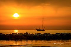 la pesca (cinzia.garbini) Tags: pesca alba sole mare sea seascape