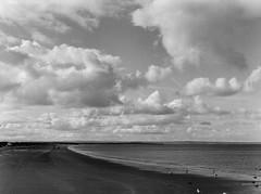 vabbè (scozia 08) (juri_kid_a) Tags: 2019 scozia scotland standrews beach spiaggia ocean oceano sea mare sky cielo clouds nuvole landscape holidays medioformato mediumformat 120 bw blackandwhite bn biancoenero bianconero mamiya analogica analogico analogue film filmcamera pellicola rullino june giugno memories ilford