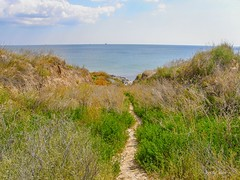 Path to the Black Sea (olaf_alien) Tags: ukraine odesa chernomorsk olympus sp560uz sea black path landscape nature grass sky blue green clouds sand hill olafalien yellow autumn sunny