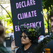 Rally and March to Save the Amazon Rainforest Chicago Illinois 9-5-19_2657
