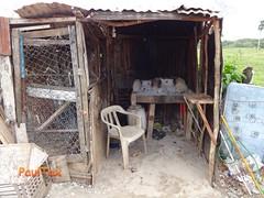 011 (PaulTax) Tags: playalaguna sosua republicadominicana dominicanrepublic