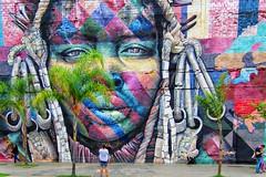Painel Etnias (2) de Eduardo KOBRA Avenida Rodrigues Alves Rio de Janeiro (Edgard.V) Tags: rio de janeiro brasil brésil brasile brazil streetart urban art urbano arte callejero mural graffiti graff kobra portrait portraiture retrato ritratto couleurs colors colori cores