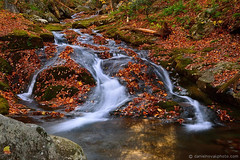 Fall Cascades - Shenandoah National Park (DTB_5235) (masinka) Tags: syria virginia unitedstates etbtsy shenandoah nationalpark fall autumn waterfall water creek rose river nature outdoors landscape colors foliage leaves cascades rocks woods moss hiking trail forest