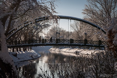 A wintry span (Through_Urizen) Tags: architecture category eskisehir kanlikavakpark landscape places snow turkey canon70d tamron70200g2 canon outdoor city citypark river water watercourse reflections ice cold winter bridge metal structure person people pedestrian trees bluesky
