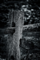 Happy Fence (Post) Friday! (FotoFloridian) Tags: aurora backgrounds blackandwhite dark fence grass newyork nopeople old outdoors ruralscene rustic scenics sony tranquilscene tree weathered woodmaterial woodenpost a6400 alpha landscape nature happyfencefriday