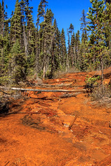 Paint Pot Stream (http://fineartamerica.com/profiles/robert-bales.ht) Tags: canada forupload paintpot places scenic fgeothermal landscape mud thermal mountain national hot pot steam nature geology pool tourism beautiful geyser basin bubble mineral water tourist visitor mudpool icelandic volcanic boiling landmark sulfuric sulphur surreal dramatic bubbling sulfur mudpot geothermalarea vulcanic kootenaynationalpark red trail colorful milky slit glacial vermilionriver emerald paintpots green robertbales streamriver