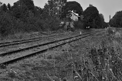 Am Bahnhof. (wimjee) Tags: urban blackandwhite bw abandoned monochrome train blackwhite nikon zwartwit decay decayed trein zw urbex verlaten vervallen niksoftware silverefexpro2 d7200 nikond7200 afsdx1680mmf284eedvr