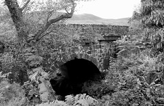 Old bridge on 'The String' road (Dave Russell (1.5 million views thanks)) Tags: string road pass glen shurig isle island arran west western scotland ecosse clyde islands outdoor scene scenery stone bridge structure old aged land scape landscape bw black white blackandwhite mono monochrome photo photography photograph canon eos eos7d 7d tree nature