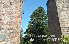 A l'entrée du château d'Epinal (MAPNANCY 2) Tags: cloche entrée jardin château epinal