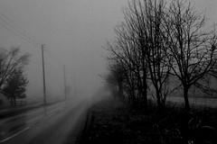 Foggy morning another one (shou yokoya) Tags: film 35㎜ 135 analogue bw bessat nokton classic 40㎜ kodak trix 400tx 400 monochrome foggy fog street misy