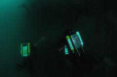 Scotland-201908-Orkney-Dive5-Coln-3-RebreatherDivers-DaveMatt (Tony J Gilbert) Tags: orkneys scotland scubadiving orkneyislands marine diving marinefish nikond300 60mmlens 105mmlens underwater underwaterphotography travel travelogue scottishtravel scottishscubadiving scottishlandscapes scottishwildlife