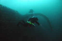 Scotland-201908-Orkney-Dive5-Coln-2-TechnicalDiver-Phil (Tony J Gilbert) Tags: orkneys scotland scubadiving orkneyislands marine diving marinefish nikond300 60mmlens 105mmlens underwater underwaterphotography travel travelogue scottishtravel scottishscubadiving scottishlandscapes scottishwildlife