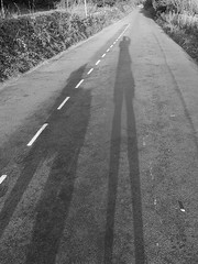 Macclesfield-201908-61-LongShadows-CassieTony (Tony J Gilbert) Tags: orkneys scotland scubadiving orkneyislands marine diving marinefish nikond300 60mmlens 105mmlens underwater underwaterphotography travel travelogue scottishtravel scottishscubadiving scottishlandscapes scottishwildlife