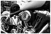 Harley Davidson #1 Black & White