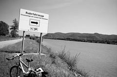Stockerau (Harald Reichmann) Tags: stockerau donau landschaft fluss wasser information schild rad pfeil analog film nikonfm2 wald greifenstein
