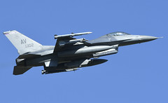 """F-16CM AV 89-2102, 510th Fighter Squadron """"Buzzards"""" Aviano AFB, Italy (TAIRNGREACHT_BAS) Tags: f16c usaf viper usafe aviano afb"""