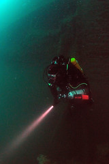 Scotland-201908-Orkney-Dive5-Coln-5-RebreatherDiver-Dave (Tony J Gilbert) Tags: orkneys scotland scubadiving orkneyislands marine diving marinefish nikond300 60mmlens 105mmlens underwater underwaterphotography travel travelogue scottishtravel scottishscubadiving scottishlandscapes scottishwildlife