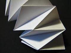 (Vallø) Tags: vallø danmark denmark closeup macro paper papir white hvidt sort blomst indoor inside details detaljer lines linjer colorbw naturalbw 2019