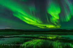 Aurora over Prosperous Lake, Yellowknife (Sept 5-6, 2019) (Amazing Sky Photography) Tags: water september prosperouslake yellowknife ingrahamtrail aurora northernlights borealis reflection nwt northwestterritories curtains green purple