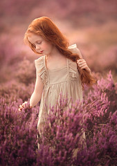Pink Fields ({jessica drossin}) Tags: jessicadrossin child girl redhair redhead flowers field naturallight pink outside wwwjessicadrossincom