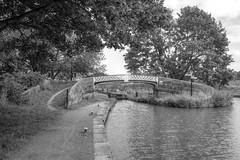 Hazlehurst (Tony Tooth) Tags: nikon d7100 sigma 1750mm bridge canal hazlehurst hazlehurstjunction caldoncanal victorian longsdon staffs staffordshire bw blackandwhite monochrome
