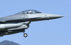 """Pilot 510th Fighter Squadron """"Buzzards"""" (TAIRNGREACHT_BAS) Tags: usaf f16c block40 viper aviano"""