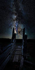 Galactic Roundup (gmartin1215) Tags: coral mountains stars sky night colorado planets city cows livestock nature wilderness rustic rural scenic nightscapes