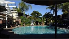 The Pool   Dinah's Garden Hotel   Palo Alto, California (steveartist) Tags: swimmingpool dinah'sgardenhotel paloaltoca sky palms snapseed sonydscwx220 stevefrenkel