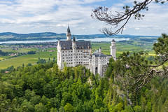 tophill Neuschwanstein Castle and forest (arnaud_martinez) Tags: blue city germany hill hohenzollern ii jura lichtenstein neckar neuschwanstein sky summer swabian architecture bastion bavaria building castle chapel cinderella count domination emîre forest fortress fussen garden gate gothic hilltop historical house ludwig military mountain orange palace palacial revival river romances standing stones stuttgart touristic towers trees valley victorian war