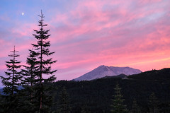 Waited almost two hours for this Sunset (Eclectic Jack) Tags: helens mt mountain sunset pink sky clouds pastel saturday smile sos tree forest state washington lookout ridge windy map september 2019 view viewpoint point color colorful america northwest pacific saint st moon fir conifir prettyinpastel pretty