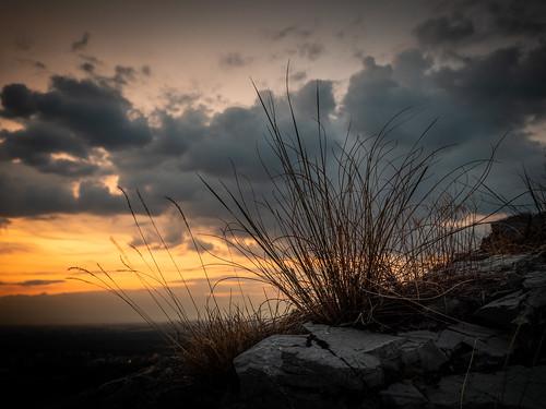 Abend am Hundsheimer Berg, sunset