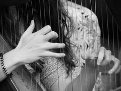 The Harpist (An Arzhig) Tags: fil festival interceltique lorient morbihan harp harpe musique music artist blackwhite bw noirblanc nb noir blanc black white fingers doigts cordes musician musicienne bretagne bzh breizh france panasonic lumix gx800 micro 43 rue street